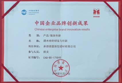 中國企業品牌創新成果